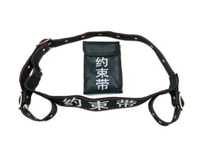 ZH-YSD-01尼龙约束带