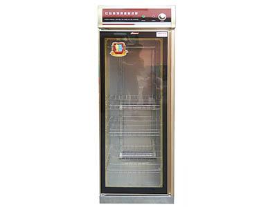 ZHTD-1专用单人烘衣柜