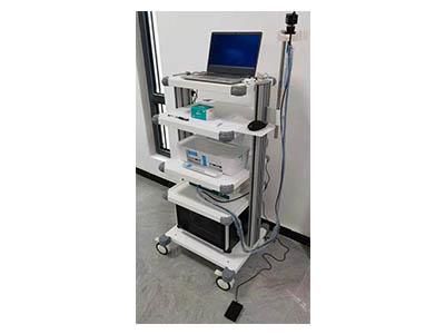 人体损伤鉴定辅助系统