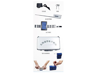 无线遥控脉冲电击电子脚扣系统