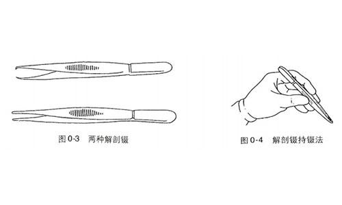 尸体解剖器材